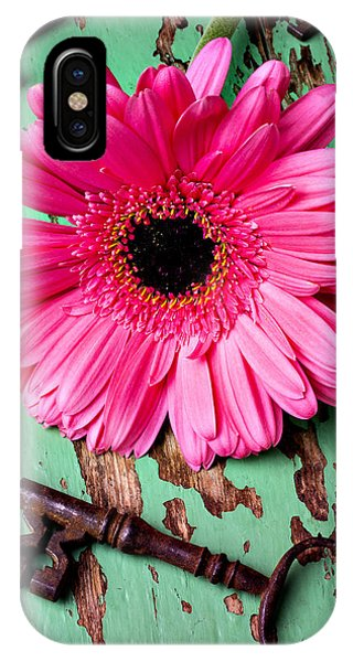 Pink Daisy And Old Keys IPhone Case