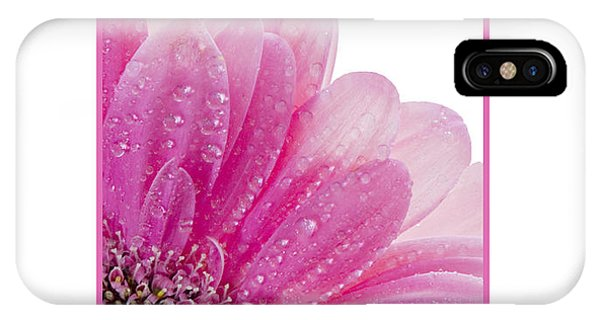 Pink Daisy Petals IPhone Case