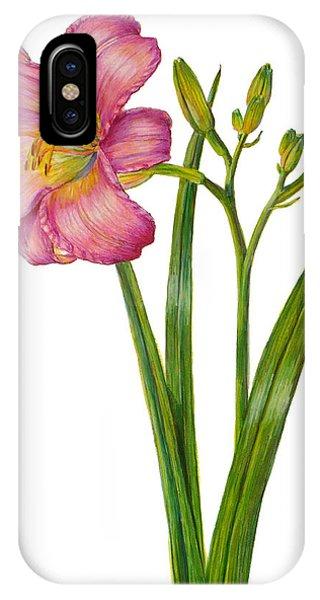 Pink Daylily - Hemerocallis IPhone Case
