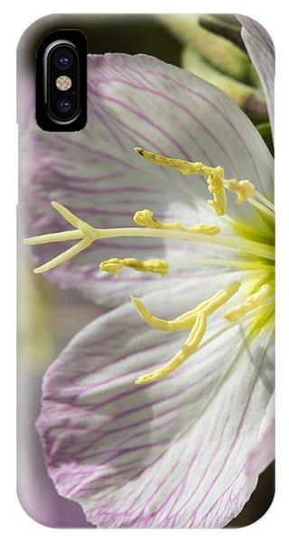 Pink Evening Primrose Flower IPhone Case