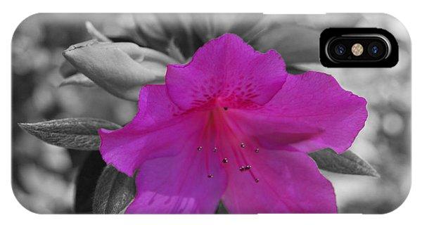 Pink Flower 2 IPhone Case