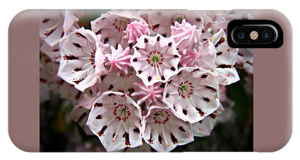 Pink Flowered Mountain Laurel IPhone Case