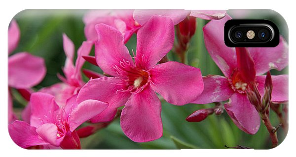 Pink Flowers Phone Case by Dave Dos Santos