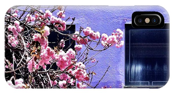 Flower iPhone Case - Pink Flowers by Julie Gebhardt