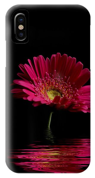 Pink Gerbera Flood 1 IPhone Case