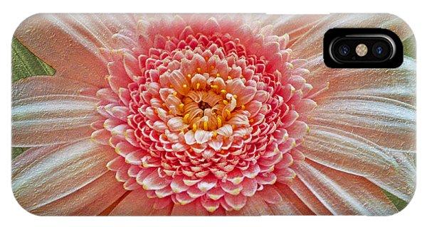 Pink Gerbera Textured IPhone Case