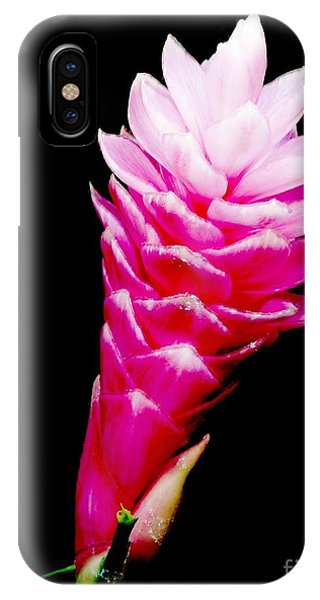 Pink Ginger Lilly IPhone Case