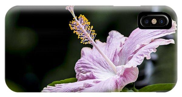 Pink Hibiscus Flower IPhone Case