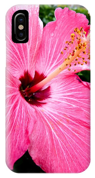 Pink Hibiscus IPhone Case
