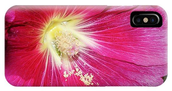 Pink Hollyhock IPhone Case