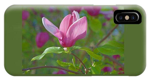 Pink Magnolia Blossom IPhone Case