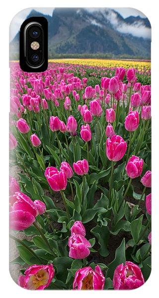 Wheeler Farm iPhone Case - Pink Mountain Tulips by James Wheeler