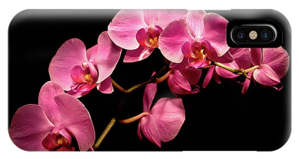 Pink Orchids 3 IPhone Case
