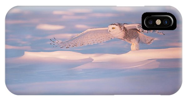 Snowy iPhone Case - Pink Owl by Marco Pozzi