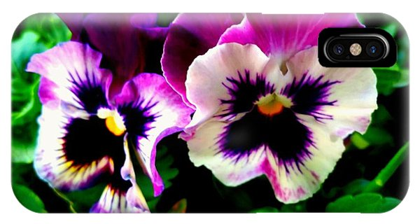 Violet Pansies IPhone Case