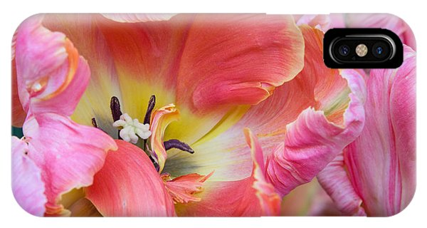 Pink Parrot Phone Case by Diana Jo Marmont