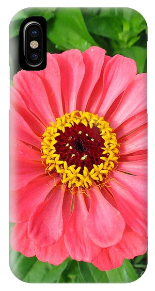 Pink Petals 2 IPhone Case