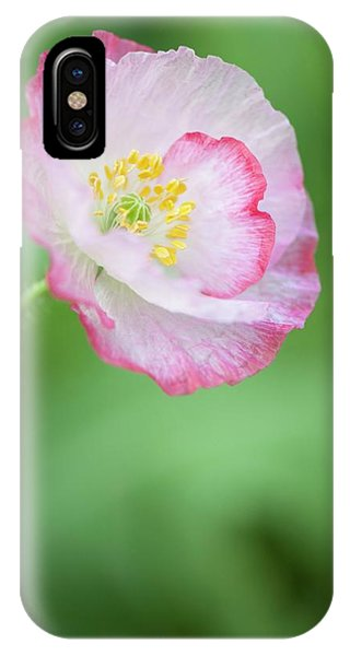 Pink Picotee Shirley Poppy Phone Case by Maria Mosolova