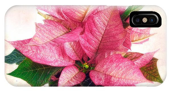 Pink Poinsettia IPhone Case