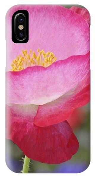 Pink Poppy IPhone Case