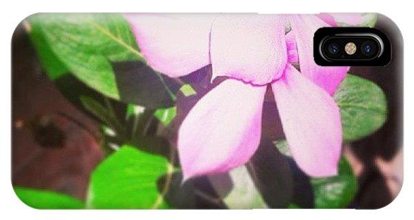 Petals iPhone Case - Pink by Raimond Klavins