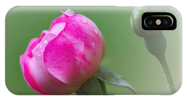 Pink Rose And Raindrops IPhone Case