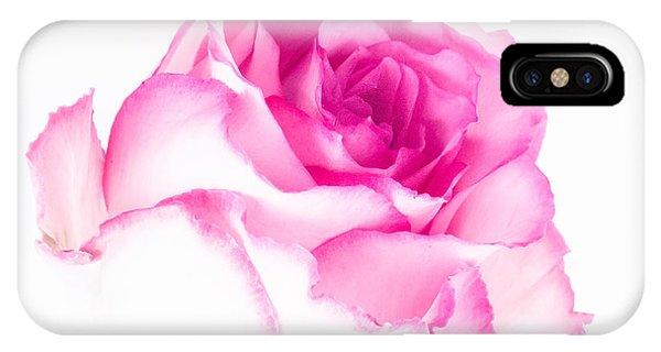 Pink Rose Confection IPhone Case