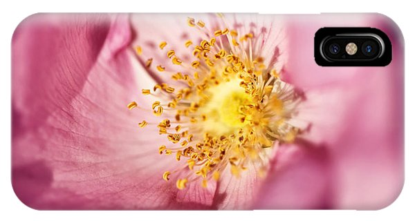 Frau iPhone Case - Pink Rose Flower Photographic Close Up by Natalie Kinnear