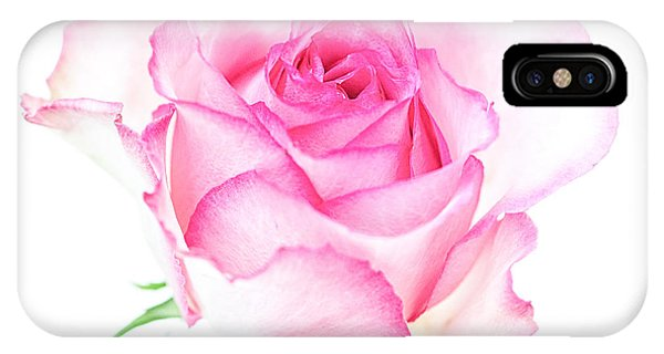 Pink Rose Proud IPhone Case
