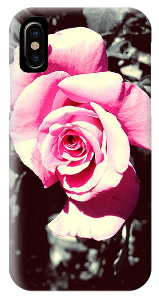 Pink Rosetta  IPhone Case