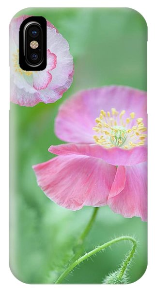 Cultivar iPhone Case - Pink Shirley Poppies by Maria Mosolova