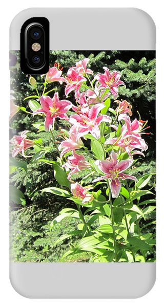 Pink Stargazer Lilies-greeting Card IPhone Case