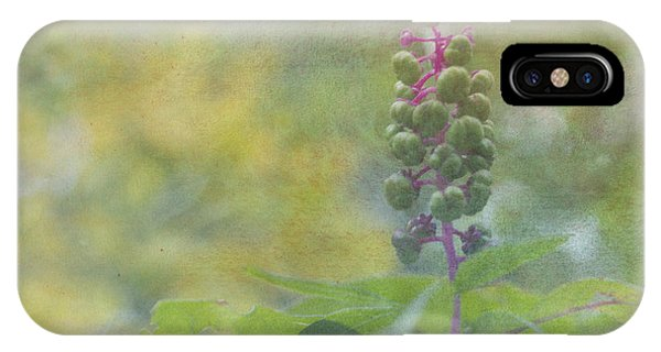 Pink-stemmed Plant IPhone Case