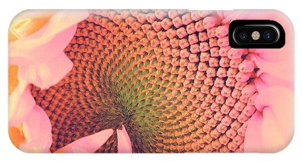 Sunflower Seeds iPhone Case - Pink Sunflower by Marianna Mills