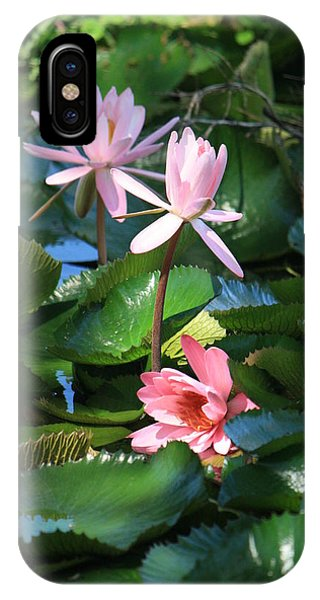 Pink Water Lillies IPhone Case