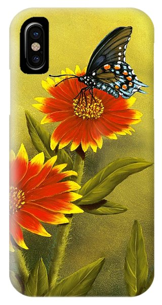 Pipevine Swallowtail And Blanket Flower IPhone Case