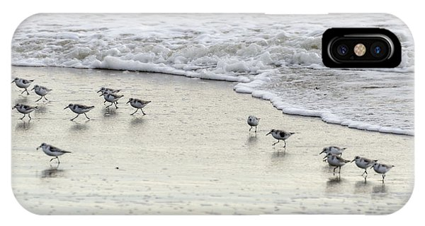 Piping Plovers At Water's Edge IPhone Case