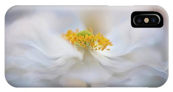 Flower Gardens iPhone Case - Pirouette by Jacky Parker
