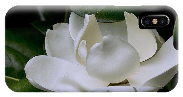 Plain Magnolia IPhone Case