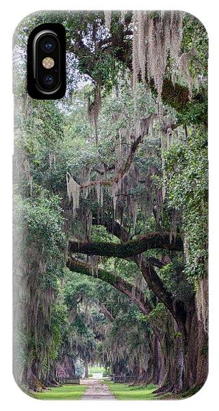 Plantation Path IPhone Case