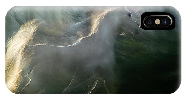 White Horse iPhone Case - Play Graund by Milan Malovrh