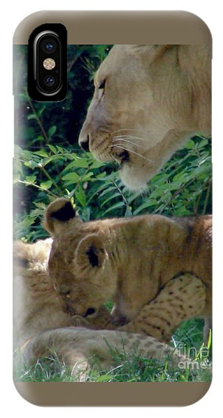 Playful Cubs IPhone Case