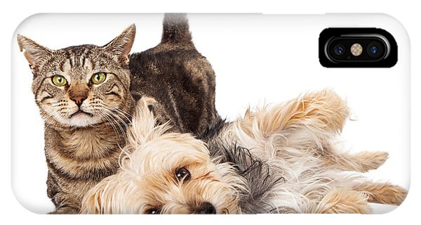 Playful Dog And Cat Laying Together IPhone Case