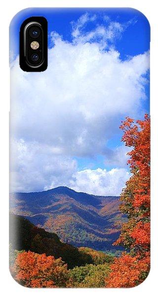Plott Balsam Mountains Foliage IPhone Case