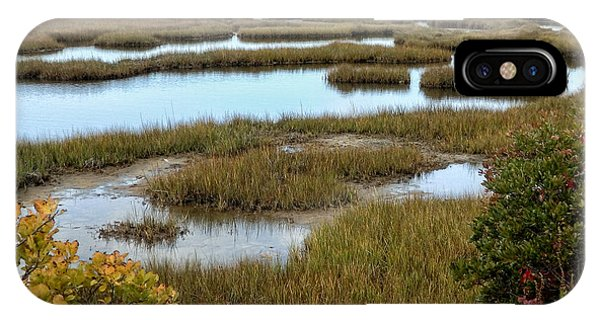 Plum Island Marshes In Autumn 2 IPhone Case