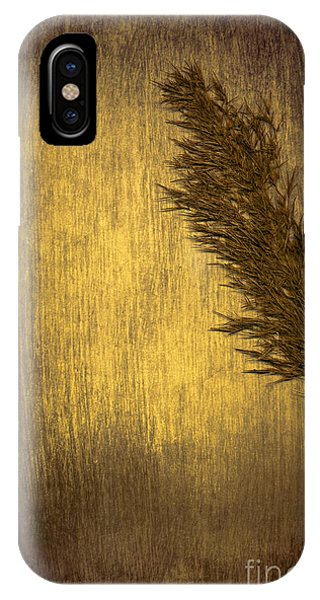 Plumes iPhone Case - Plume by Jan Bickerton