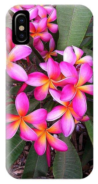 Plumeria Bouquet  IPhone Case