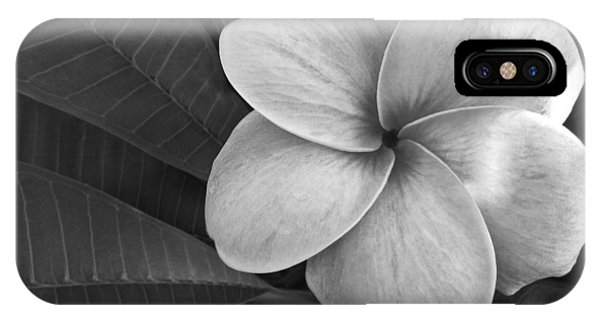 Plumeria With Raindrops IPhone Case