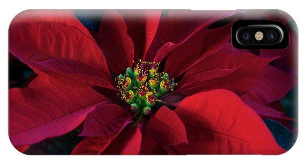 Poinsettia All Profits Go To Hospice Of The Calumet Area IPhone Case