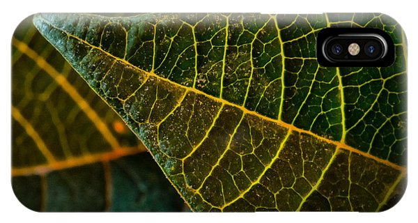 Poinsettia Green Leaf IPhone Case